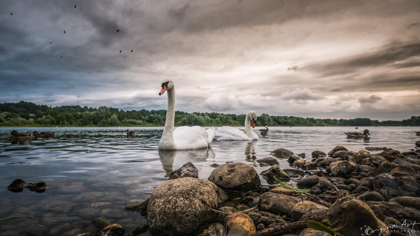 Whitlingham_Broad-6.jpg