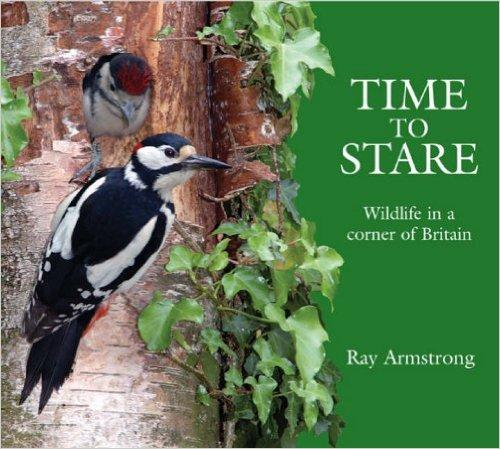 Time to Stare: Wildlife in a Corner of Britain