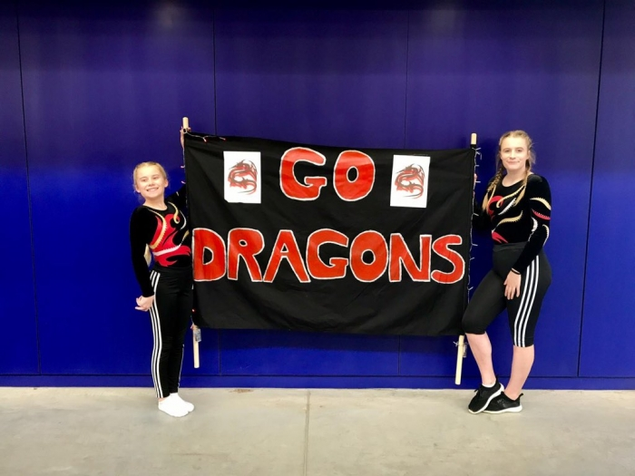 Help find Dragons Trampoline Club a new home